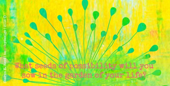 Seeds of Possibility_1